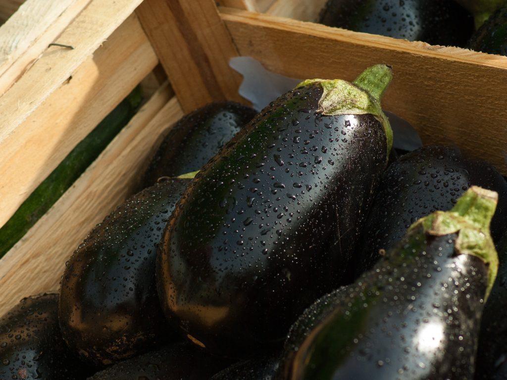 degorger-aubergine